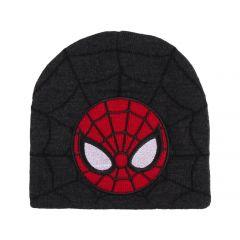 Gorro Con Aplicaciones Bordado Spiderman