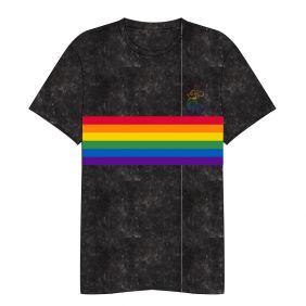 Camiseta Corta Acid Wash Disney Pride Adultos