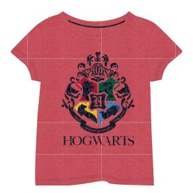 Camiseta Corta Single Jersey Harry Potter.jpg