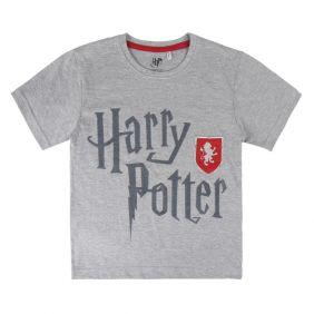 Camiseta_Manga_Corta_Premium_Harry_Potter_Gris.jpg